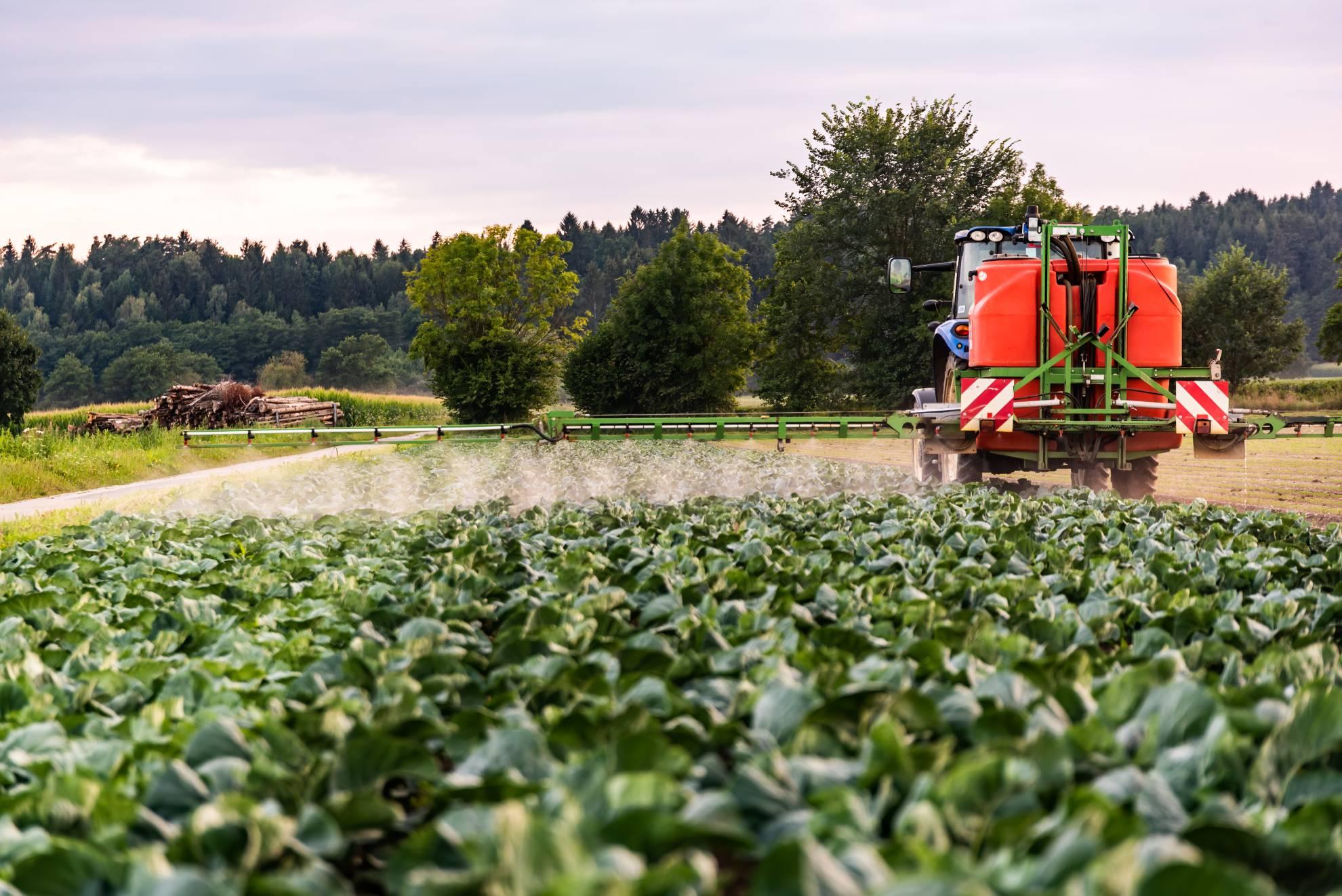 tractor-spraying-pesticides-on-cabbage-field-QMREFDZ (1)