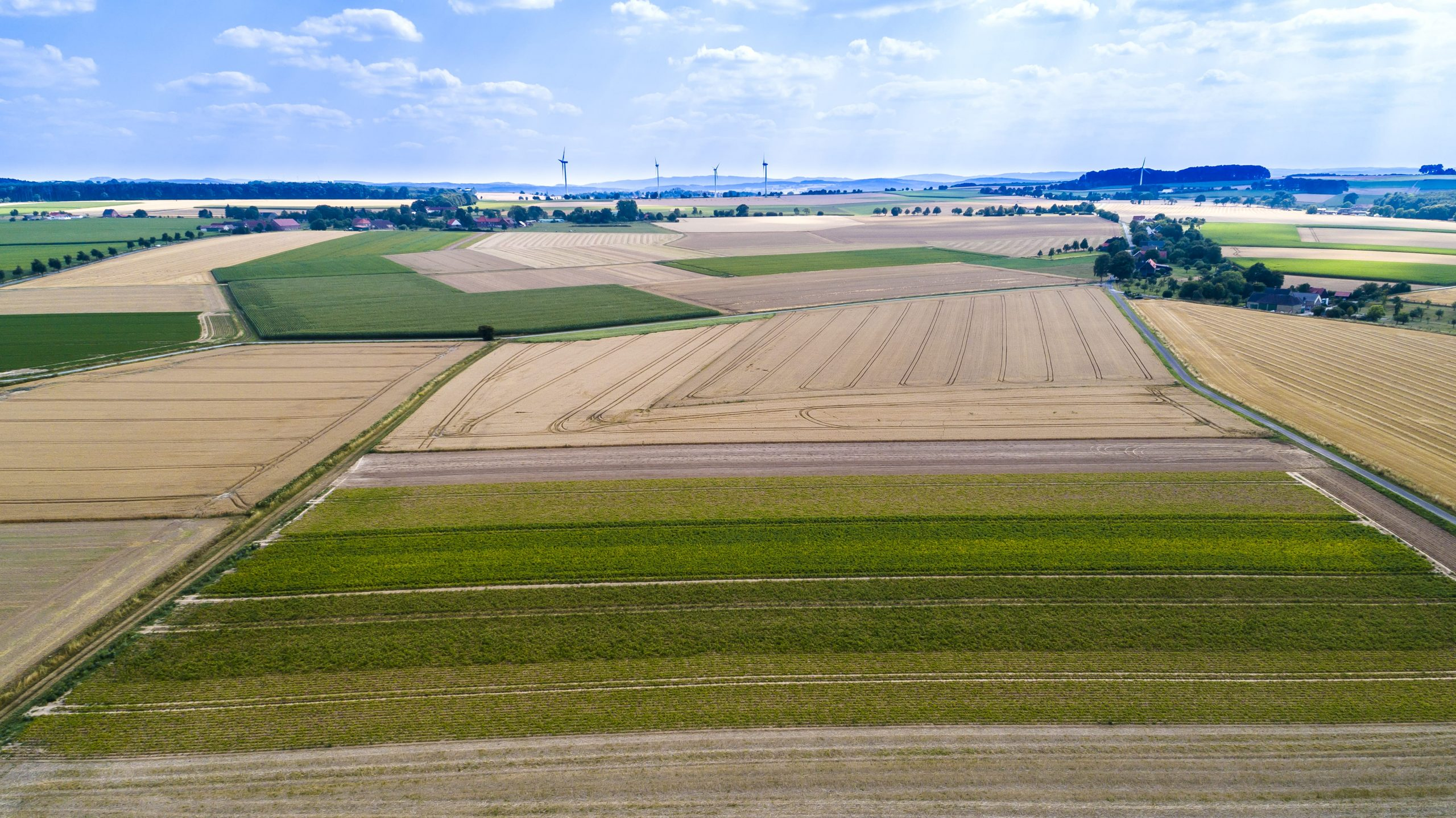 aerial-view-of-agricultural-fields-YX3QHJB